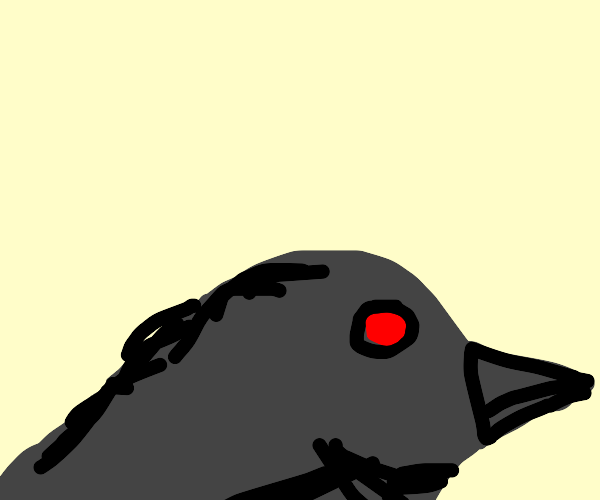 raven with red eyes