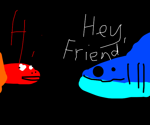 a shark and fish are friends