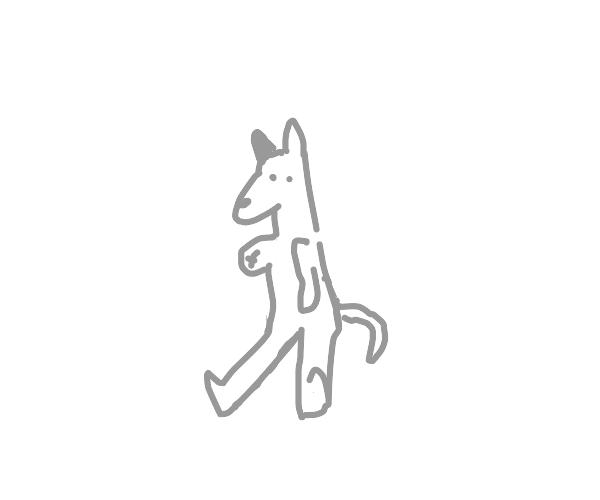 Gray dog sitting