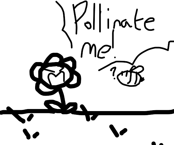 flower asks to be pollinated