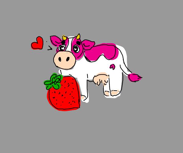 strawberry cow !!