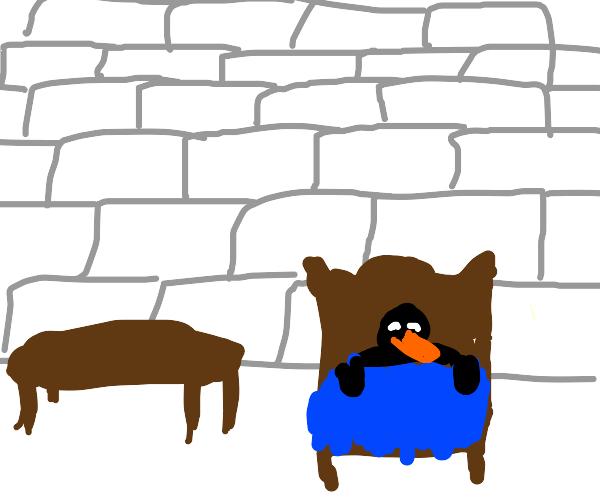 Pinguin sleeps in Igloo