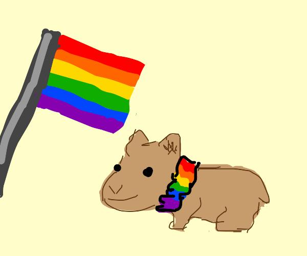 pride hamsters