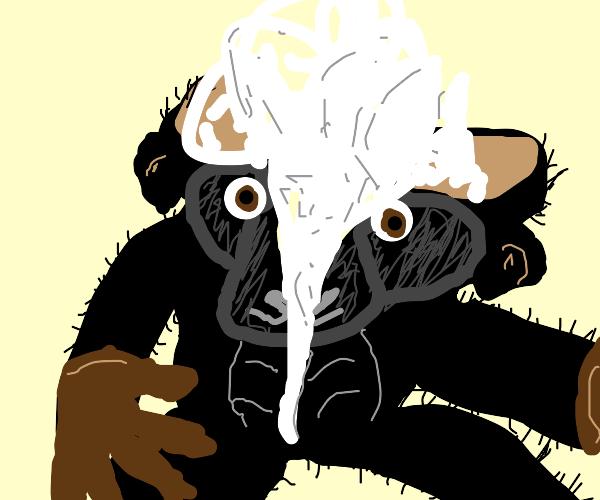 Gorilla plushie is torn in half