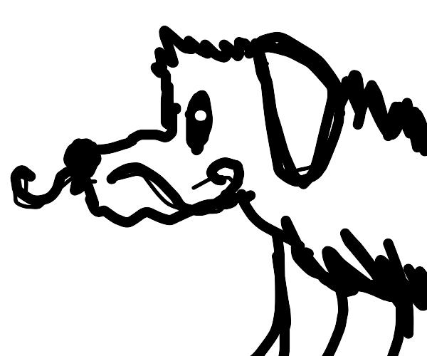 dog/dragon