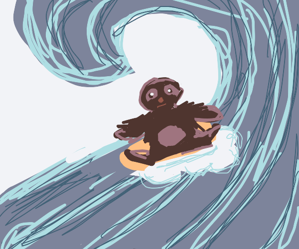 sloth surfing