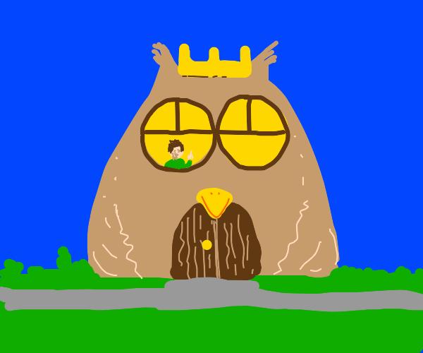 Owl king shaped house