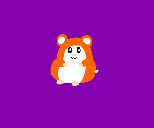 awwww!  what a cute hamster UwU