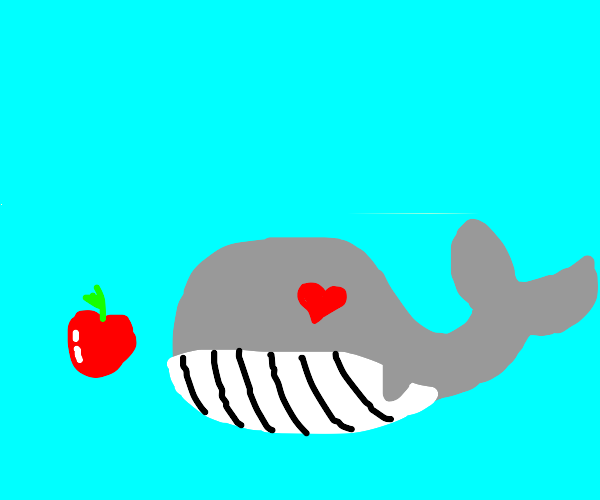 whale loves apple