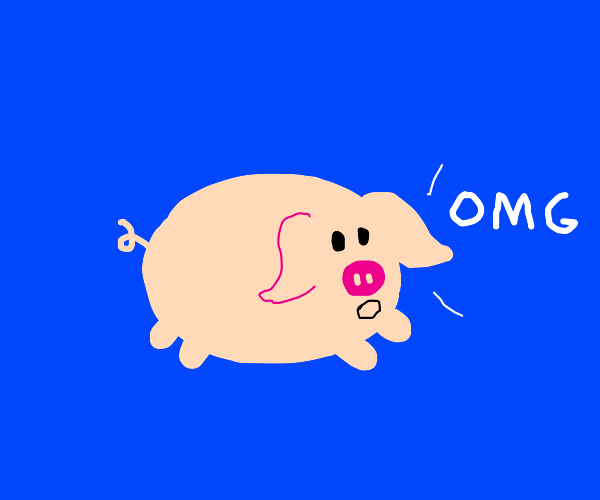 Pig goes omg