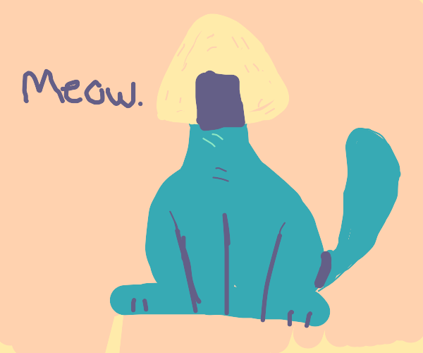 Cat with onigiri head and guy