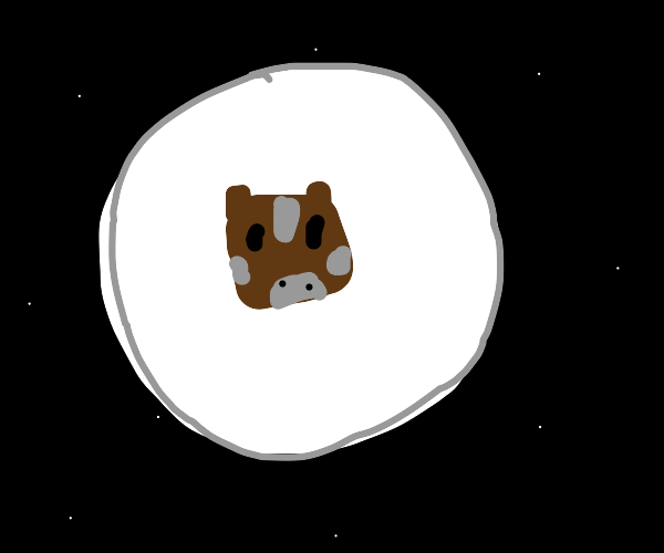 cow on the moon