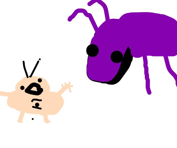 short person vs. ant