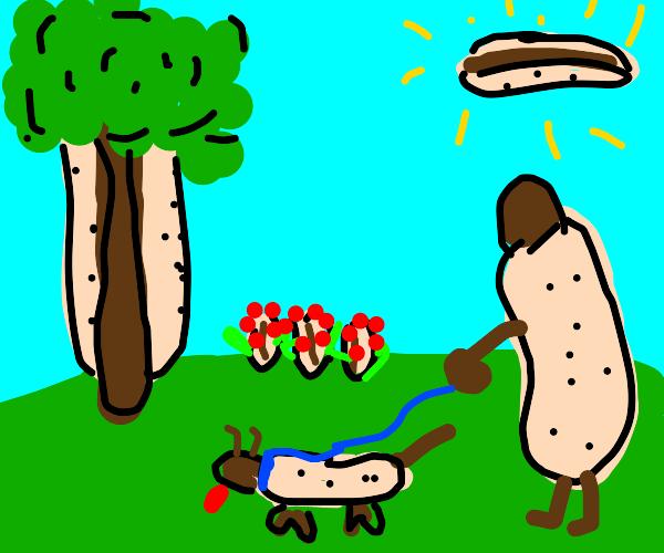 Everything hotdog