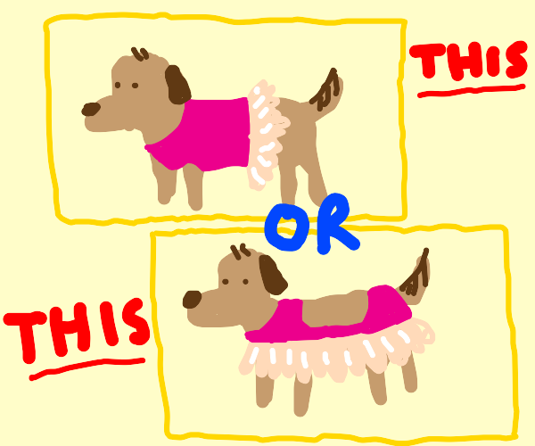 A dog in a pink dress