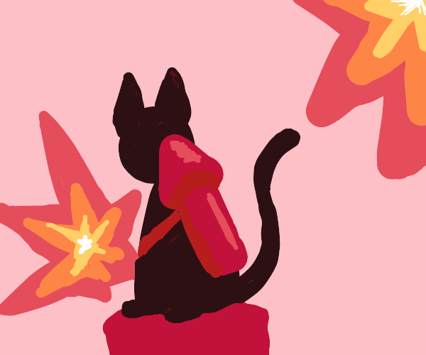 explosion cat!!!!!!