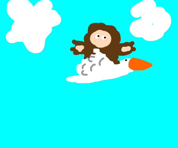 Monkey rides a flying duck