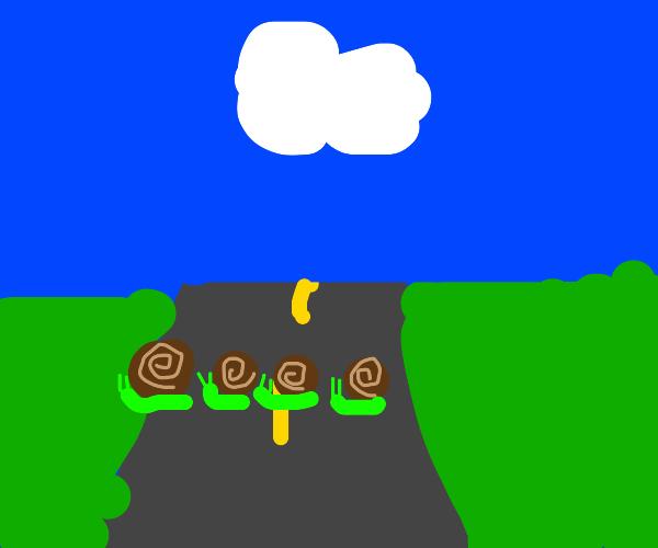 Snail family crosses a road