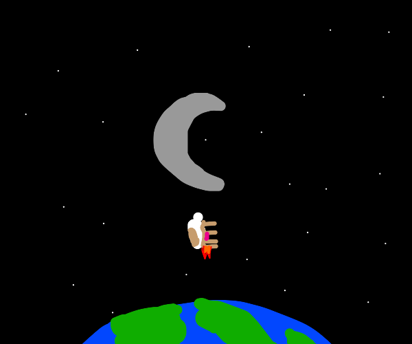 cow flies to the moon