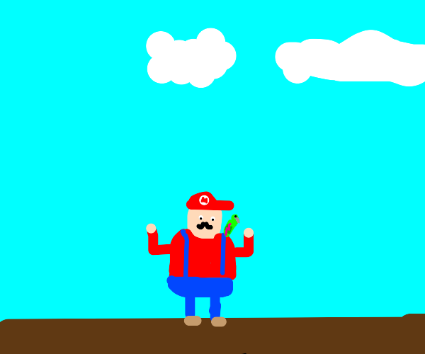 mario with a parrot