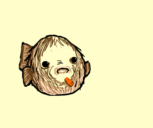 Puffer Fish gonna eat that carrot