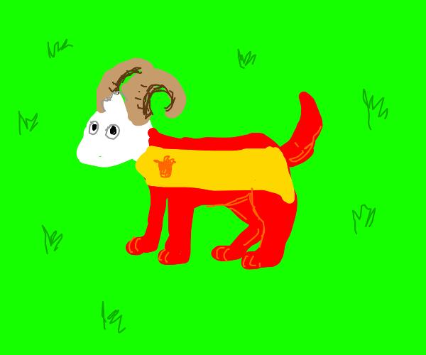 Jschaltt the Spanish dog