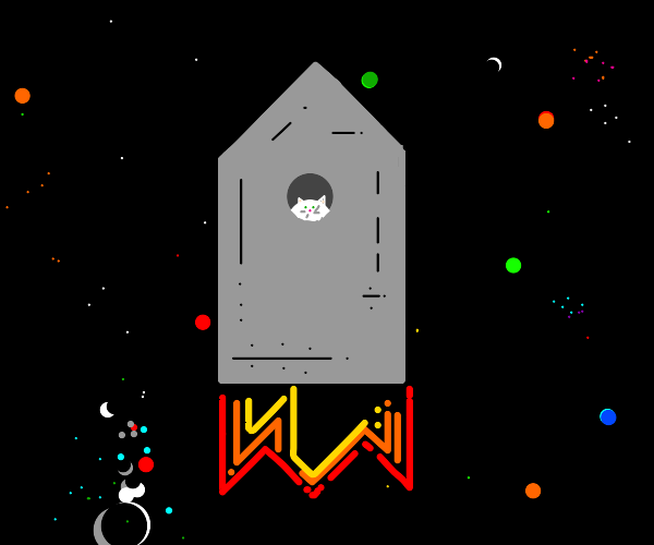 space cat in a space ship