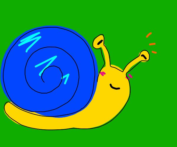 Cute snail in the wild