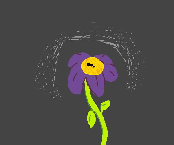 Small dead guy in flower