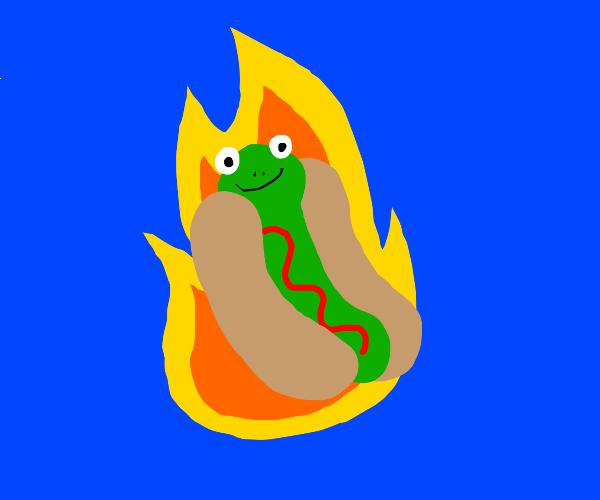 frog hotdog on fire