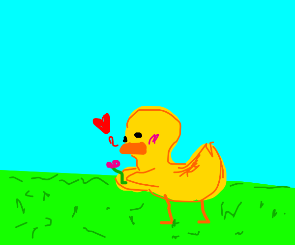 Duck loves flower