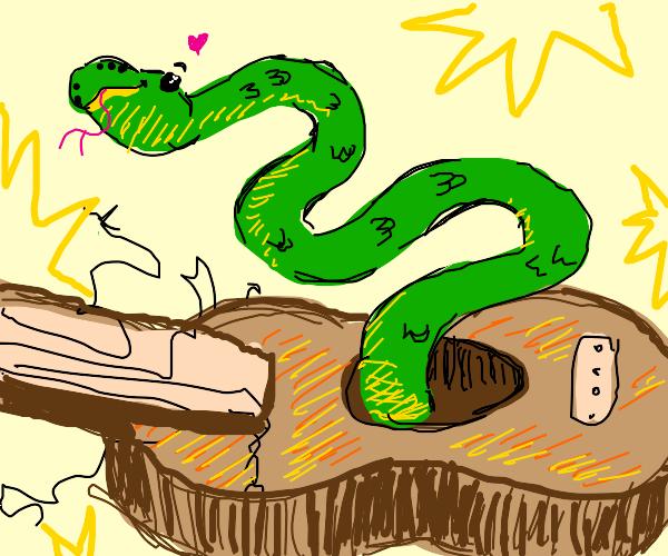 guitar snake