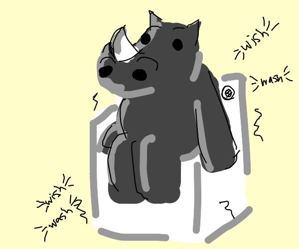 Rhino on a washing machine