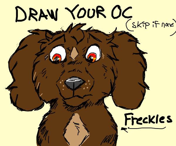 Draw your ocs PIO