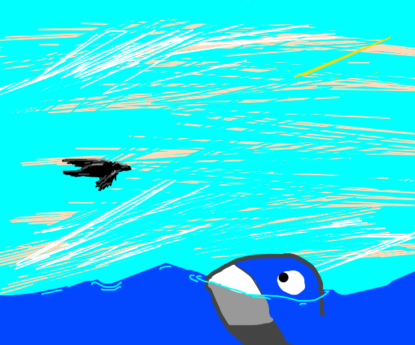 Whale being disturbed by flying black bird