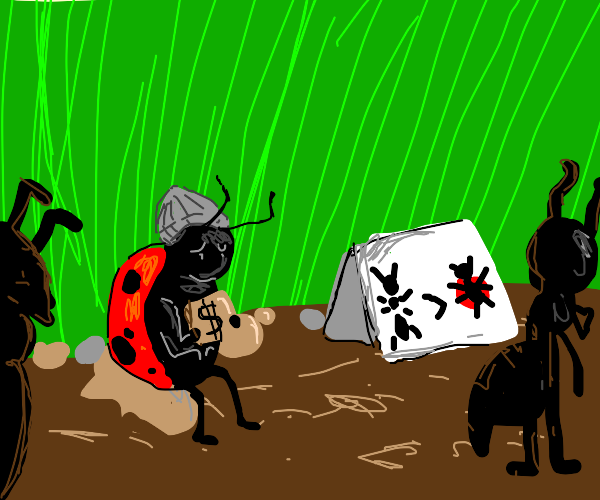 Ants are racist against Ladybugs