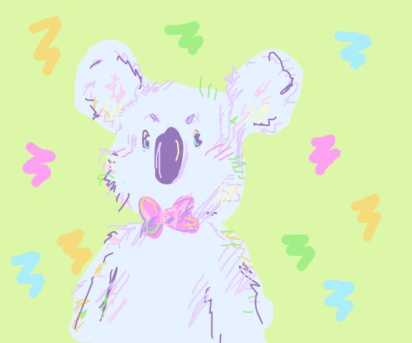 Koala wearing a bow