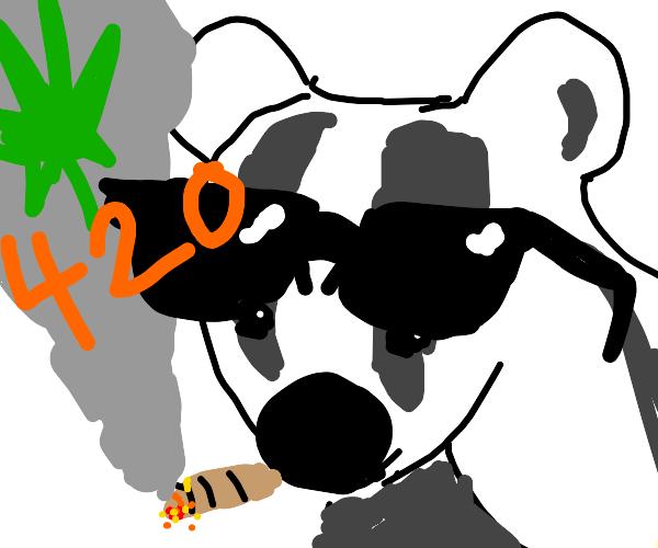 420 Badgers