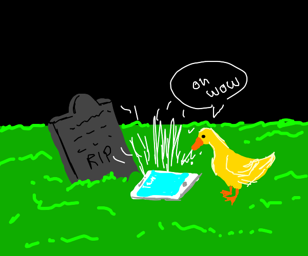 duck finds ipad next to a grave