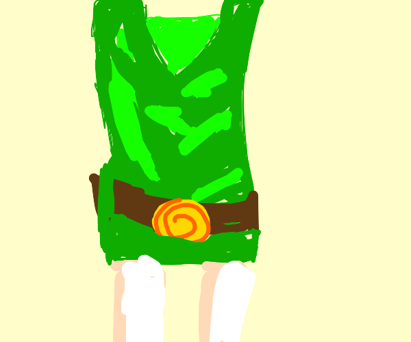 skirt of Link's tunic
