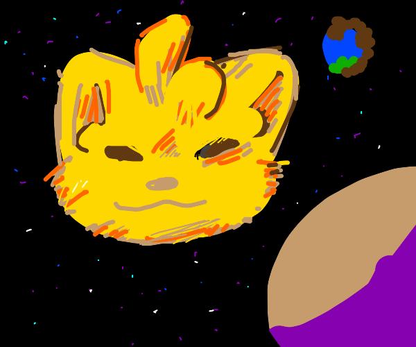Dog sun