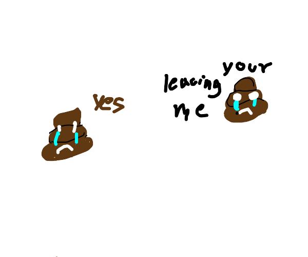 emotional breakup with poop