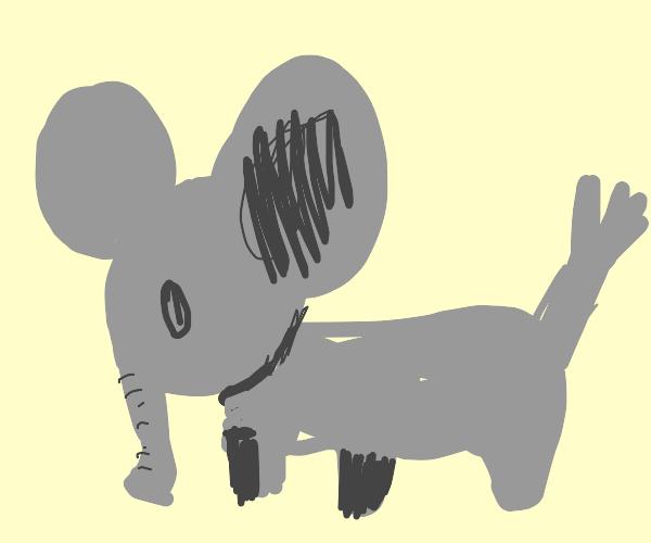 el elephant