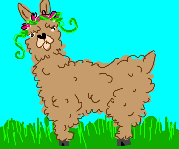 Llama with a headband on