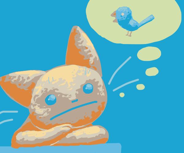cat thinks about bird