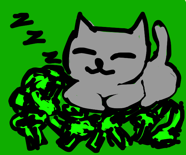 Cat sleeping in broccoli