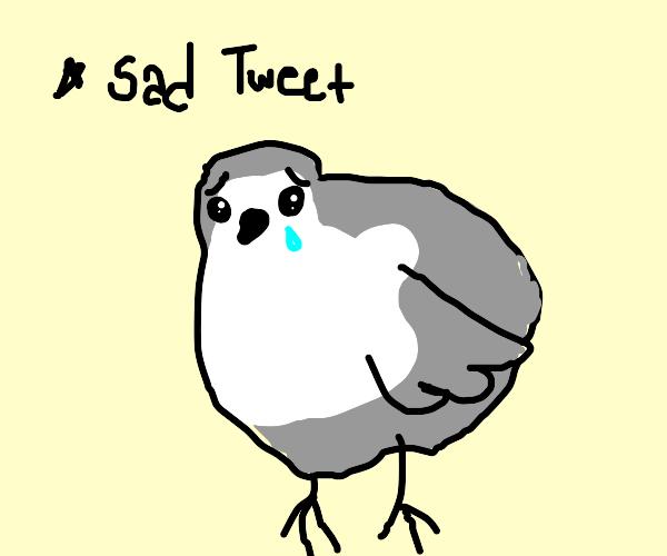sad borbs