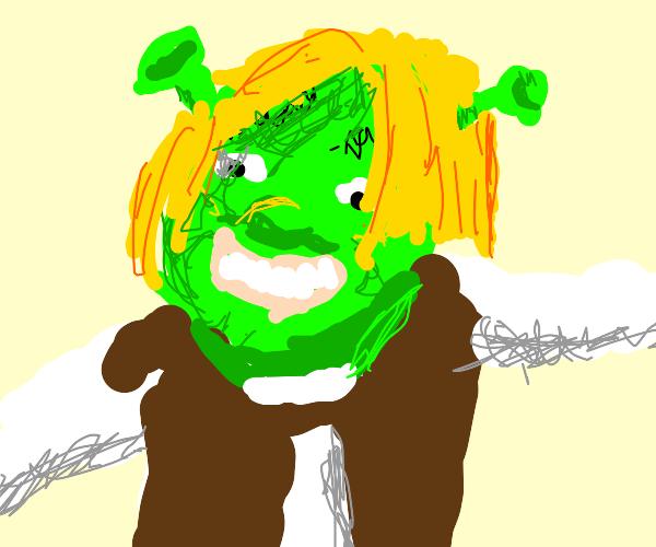 Shrek with hair