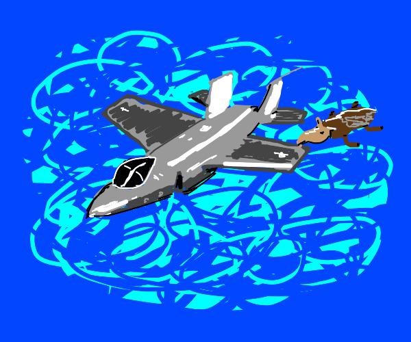 Tapir clinging to wing of fighter jet