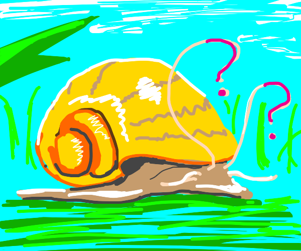 Golden apple snail looking inquisitive